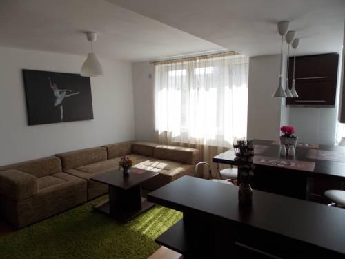 Central Apartment Suceava Suceava